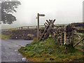 NY9070 : Ladder Stile and Signpost by David Dixon