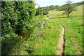 SP1321 : Bridleway beside the Windrush by Graham Horn