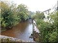 ST0611 : River Culm near Smithincott by David Smith
