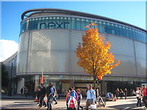 SX9292 : Autumn colour in High Street Exeter by Rod Allday