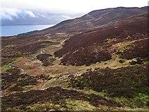 NN6355 : Moorland south of Loch Rannoch by wrobison