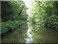 SP1969 : Grand Union Canal: Reach in Rowington by Nigel Cox