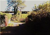 J4846 : Lane leading to farm buildings off the Killyleagh Road by Eric Jones