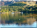 NG8033 : Boats moored off Plockton by Dave Fergusson