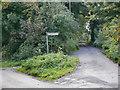 NY9465 : The Road to St John Lee by David Dixon