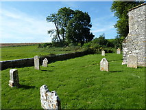 SY7699 : St Martin, Cheselbourne: churchyard (f) by Basher Eyre