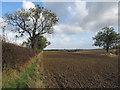 TA0120 : Wolds near Barton Hill by David Wright
