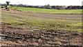 J2865 : Fields near Hilden by Albert Bridge