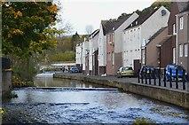 NT2540 : Eddleston Water or The Cuddy, Peebles by Jim Barton
