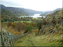 NY3915 : By Oxford Crag by Michael Graham