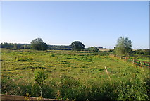 TG1508 : Field in the Yare valley by N Chadwick