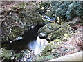 J3432 : Tranquil pool below the rapids in the Shimna gorge by Eric Jones