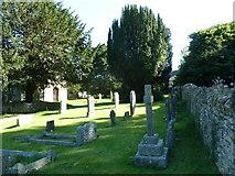 ST5707 : Melbury Osmond Churchyard (3) by Basher Eyre
