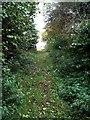 SP7337 : Bridleway to Lower Farm by Philip Jeffrey