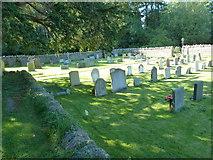 ST5707 : Melbury Osmond Churchyard (14) by Basher Eyre