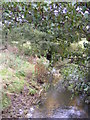 TM3976 : River Blyth at Mells Bridge by Adrian Cable