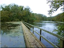 SR9694 : Footbridge across the lily pond by Gordon Hatton
