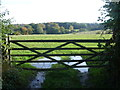 TQ4661 : View over a gate from Charmwood Lane by Marathon