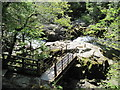 NY3403 : Footbridge  to  top  of  Skelwith  Force by Martin Dawes