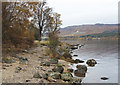 NN5456 : Boulders at southern shore of Loch Rannoch by Trevor Littlewood