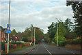 SZ0096 : Upper Blandford Road by Robin Webster