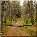 NH5842 : Forest track fording the Allt na Ceardaich by Craig Wallace