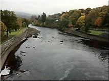 NN9357 : Downstream from Pitlochry Dam by Andrew Abbott