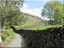 NY3404 : Footpath  to  Loughrigg  Fell by Martin Dawes