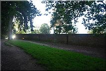 TG1908 : Wall, Earlham Park by N Chadwick
