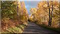 NN6259 : B846 on north side of Loch Rannoch by Trevor Littlewood