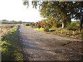 NJ8111 : Access lane to Wogle Farm by Stanley Howe