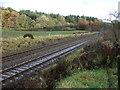 NY6764 : Railway towards Newcastle by JThomas