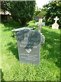 SY7190 : St Michael, Stinsford: grave of Jill Balcon by Basher Eyre