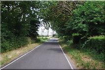 TQ9293 : Lane to Paglesham Churchend by N Chadwick