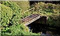 J2864 : Footbridge, Hilden by Albert Bridge