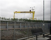 J3574 : The cranes of Harland and Wolff from the Titanic Quarter Railway Station by Eric Jones