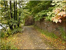 NS3980 : Footpath beside the River Leven by Lairich Rig