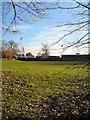 SJ9594 : Ewen Fields by Gerald England