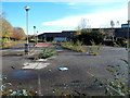 ST3188 : Weeds in a former Sainsbury's site, Crindau, Newport by Jaggery