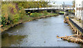 J1486 : The Sixmilewater, Antrim (4) by Albert Bridge