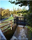SP5206 : The Mill Race, Kings Mill by Des Blenkinsopp