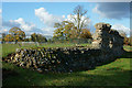 TL1306 : Roman City Wall, St.Albans by Peter Trimming