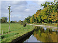 SJ6153 : Llangollen Canal north of Burland, Cheshire by Roger  Kidd