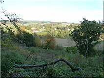 SU8214 : View NE from the slope of Chilgrove Hill by Dave Spicer