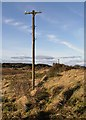 NT6182 : An old telegraph pole at Scoughall Links by Walter Baxter