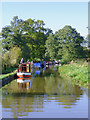 SJ5948 : Llangollen Canal near Wrenbury-cum-Frith, Cheshire by Roger  Kidd
