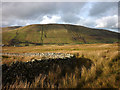SD7398 : Harter Fell and the corner of the enclosure by Karl and Ali