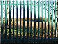 SO9296 : School Railings View by Gordon Griffiths