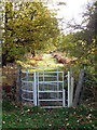 SP9931 : Gate into Daintry Wood by Philip Jeffrey