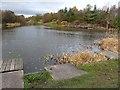 NZ1650 : Greencroft Pond by Oliver Dixon